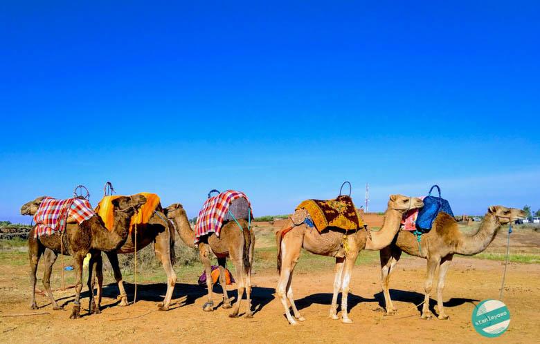 Marrakesz informacje praktyczne