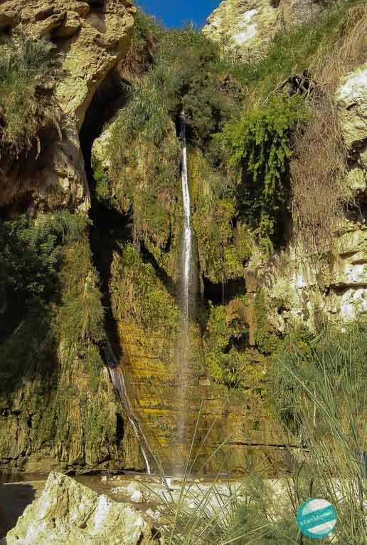 Wodospad Dawida - Park Narodowy Ein Gedi