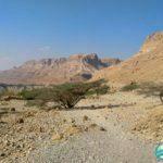 Park Narodowy Ein Gedi Izrael